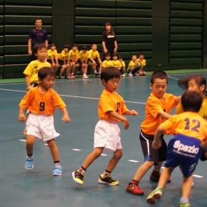 愛知県小学生ハンドボール交流会